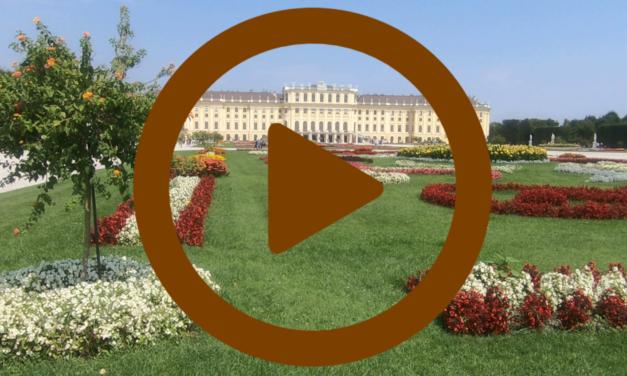 Vidéo – Vienne