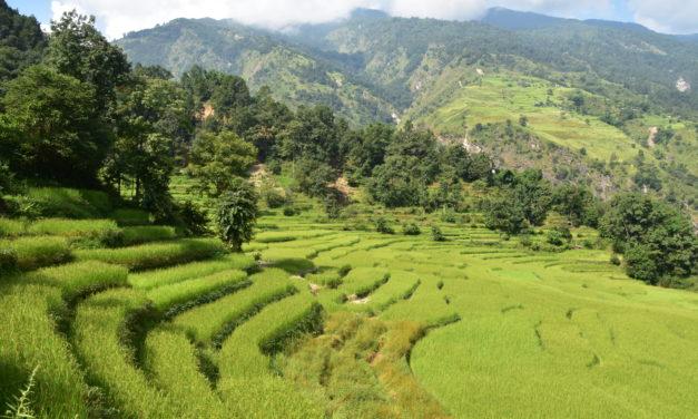 Le tour des Annapurnas – Jours 1 à 8