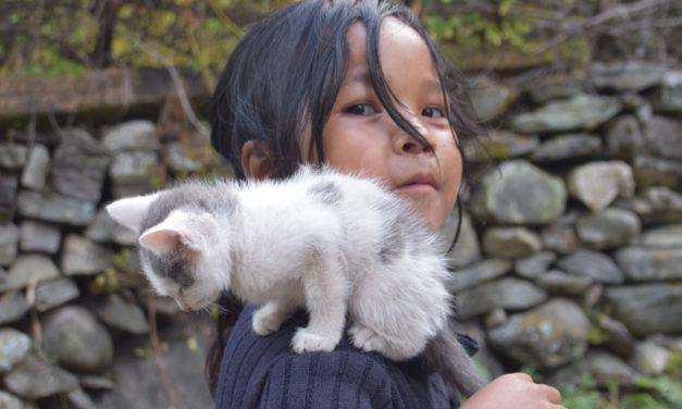 Départ pour le Népal!
